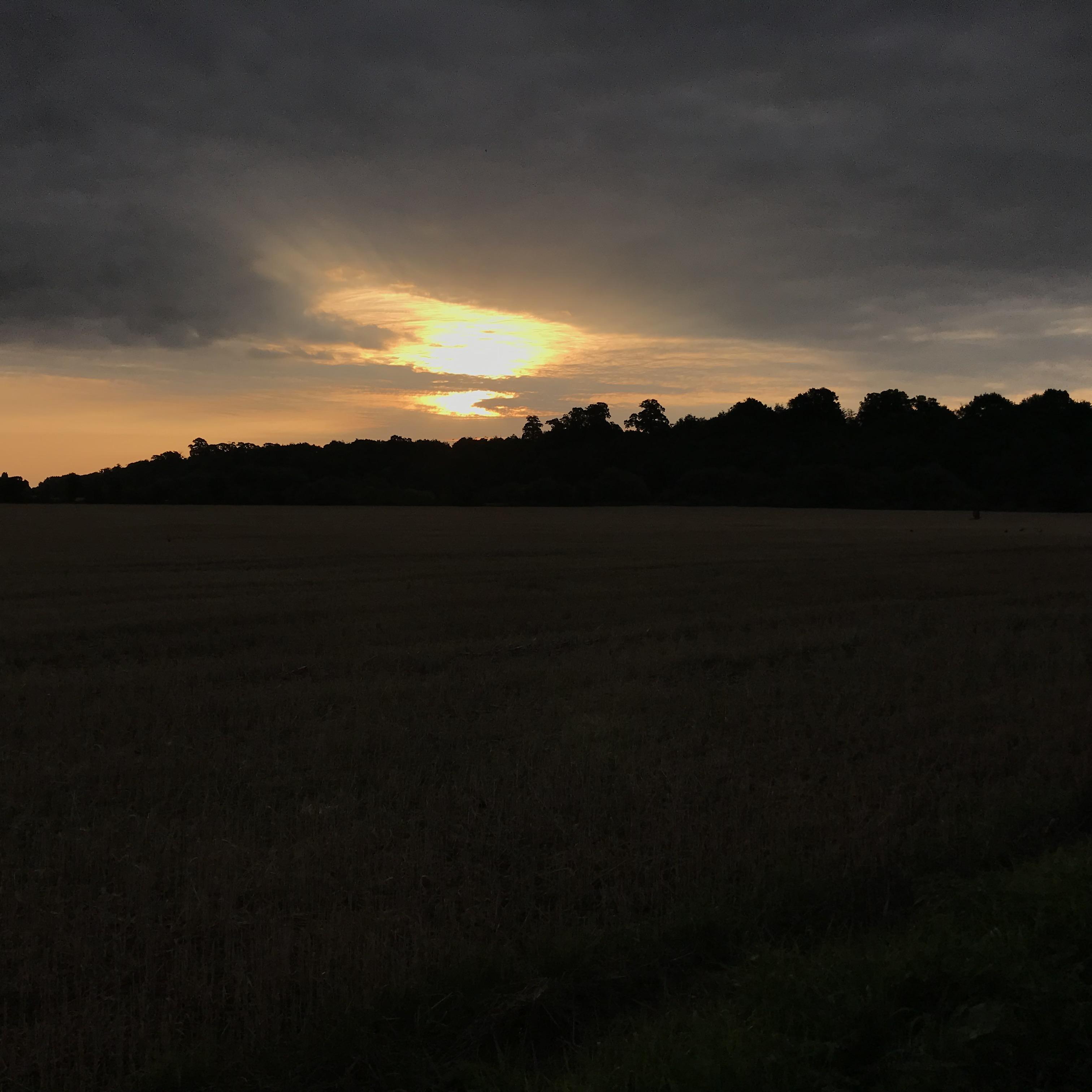 Sun rising over a field in Beeston