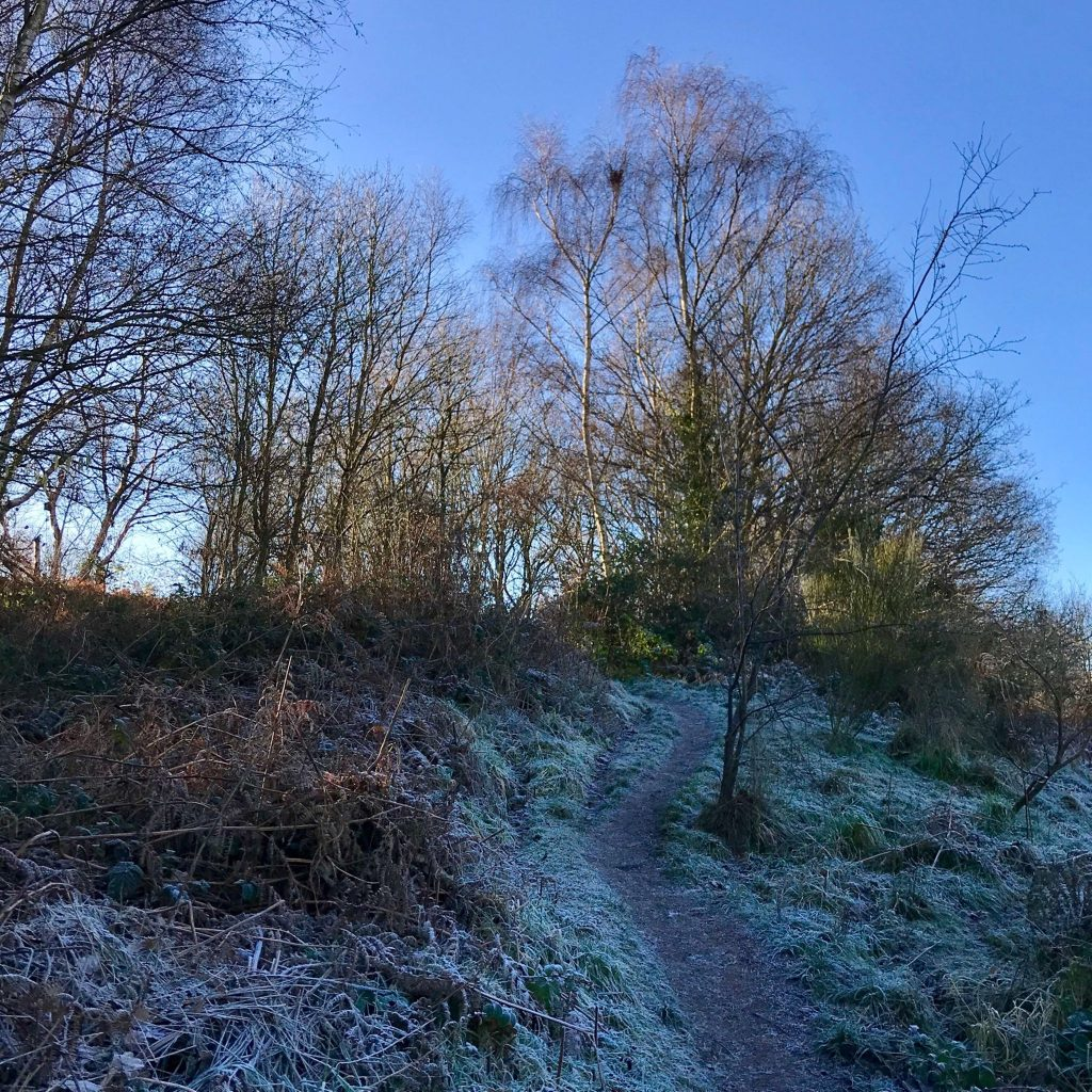 trail up to the ridge in Sandy Lane Nature reserve on a frosty afternoon