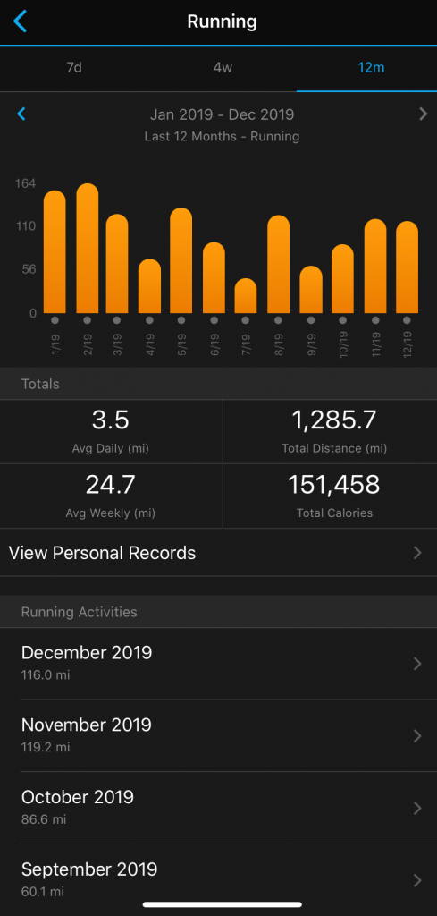 Year end graphic from Garmin Connect Mobile App