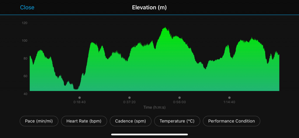 Turkey Trot 2019 elevation profile